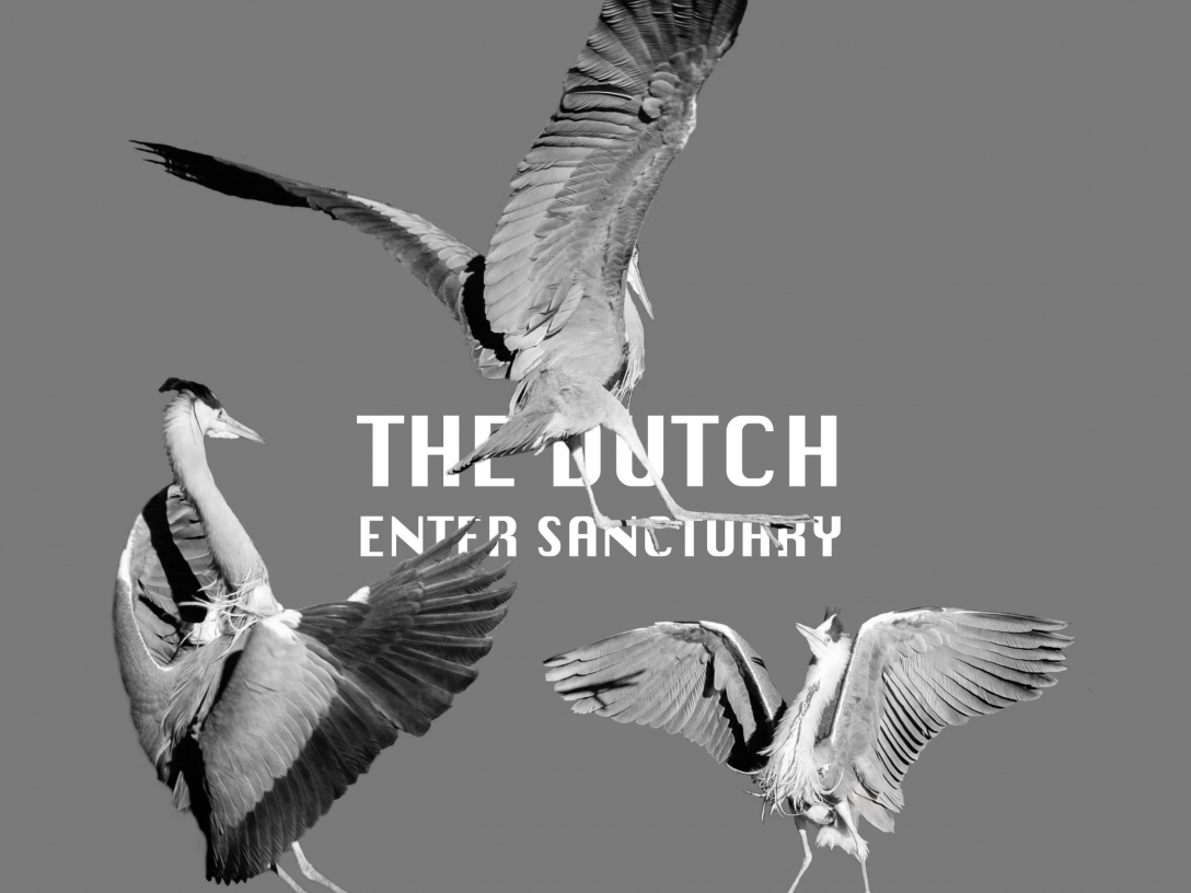 The Dutch - Enter Sanctuary
