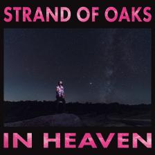 Strands of Oaks - In Heaven